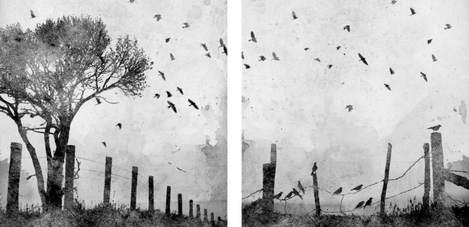 Nikita Coulombe-Looks Like Rain I and II