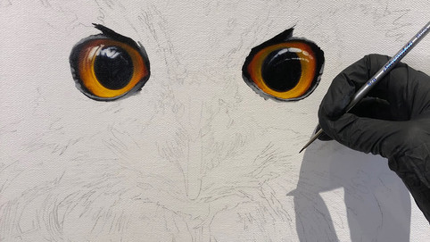 This video shows me painting the eyes of The Philosopher (Eagle Owl) at 20x the normal speed.