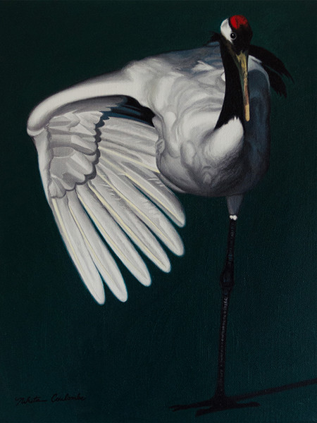 Nikita Coulombe-Crane