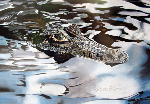 Crocodile Study, 20W x 16H inches, colored pencil on paper  This is one of my first wildlife drawings. I remember seeing a photograph in National Geographic of this little crocodile barely rising above the water and thought it was both beautiful and terrifying.