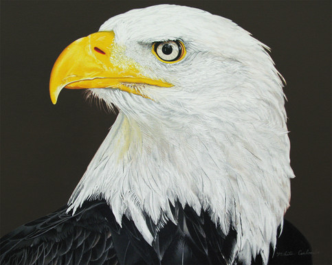 Eagle Calling, 20W x 16H inches, oil on canvas  This painting was made for a combat veteran whose son, also a combat veteran, was killed in Iraq. Eagle was the handle the son used when they communicated while he was overseas.