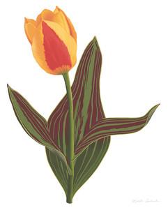 Nikita Coulombe-Tulip M3