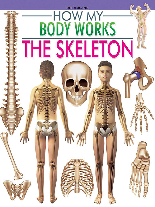 The Skeleton (How My Body Works)