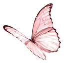 404-4047316_pink-butterfly-png-image-tra