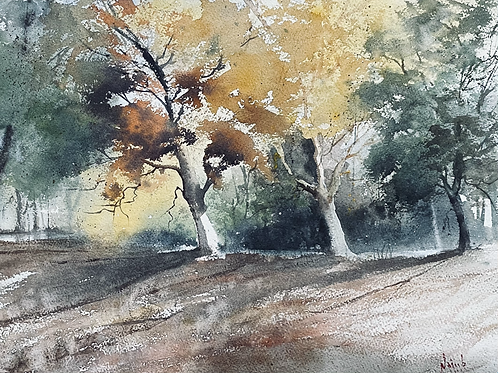 Autumn Vibes