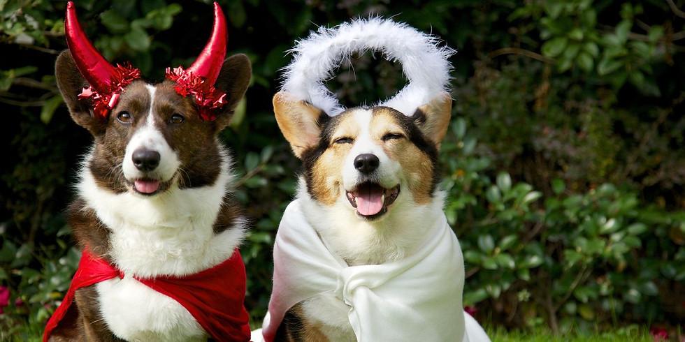 HOWL-O-WEEN  Pup & Me Fun