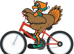 turkey bike_edited.jpg