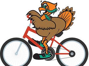 turkey bike_edited.jpg
