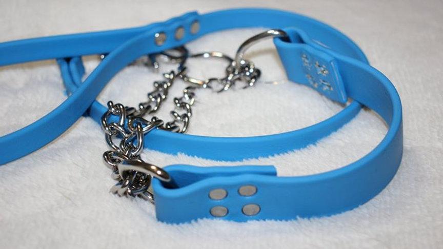 Bio Chain Martingale Collar
