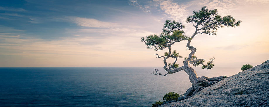 Mindfulness-and-Yoga.jpg