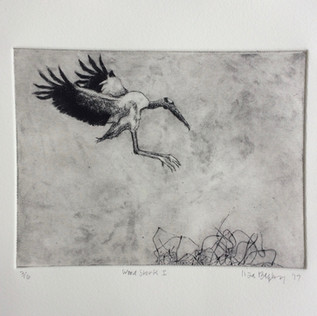 Wood Stork I