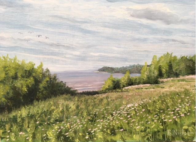 South Shore - Lake Superior