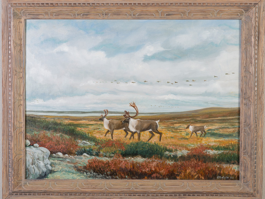 Caribou on the Tundra