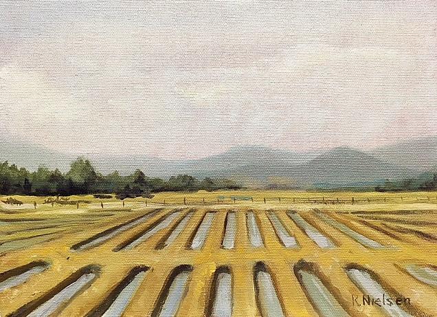 China Irrigation Fields