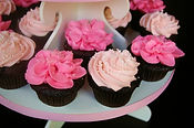 Cupcakes | Cake Artist & Designer specializing in wedding cakes, celebration cakes, cupcakes, confections, cookies, and sweet tables
