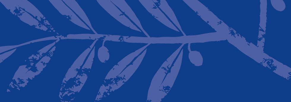 Fond-Branche.jpg