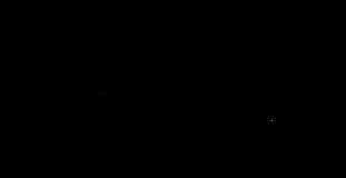 Logo_HumanSenseTechnology.png