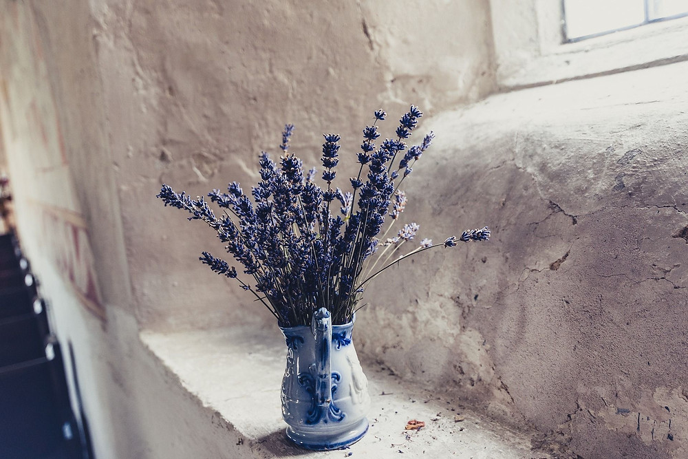 blue-lavender-in-china-jug-in-rustic-stone-cottage