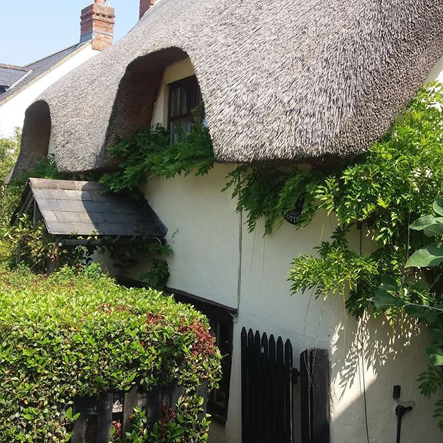 Thatched-cottage