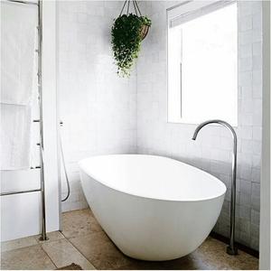 luxury-bathroom-wth-white-bath-and-hanging-plant