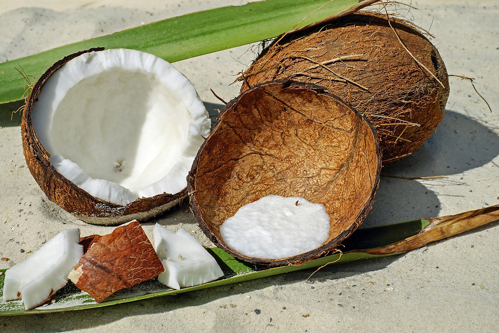 whole-coconut-and-halved-coconut-with-coconut-pieces