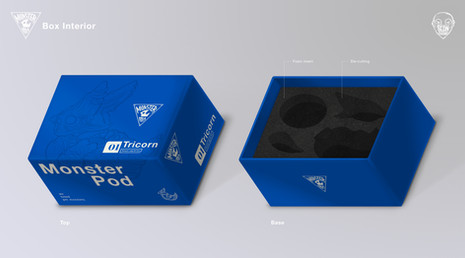 Toy Box Packaging