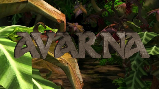 Avarna 2013: Full Animation