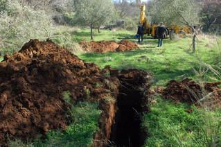 Intervention des services des forêts et de l'archéologie