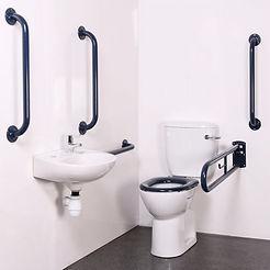 disa toilet.jpg