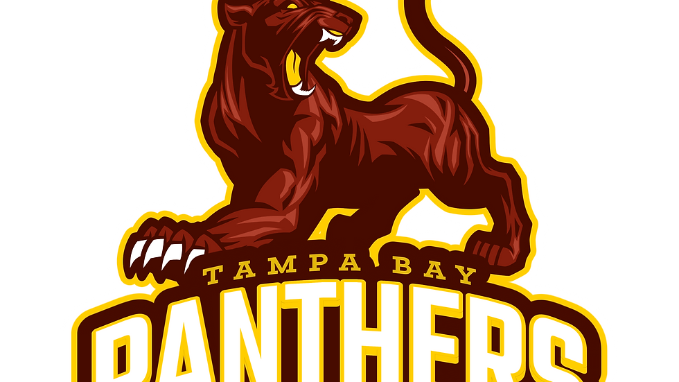 Tampa Bay Panthers Tryouts