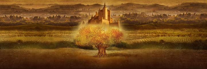 Castillo de Pinar Olive Oil Imagery