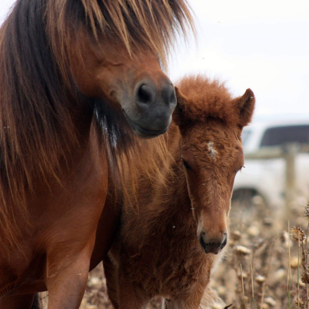 feb 19 mother & daughter