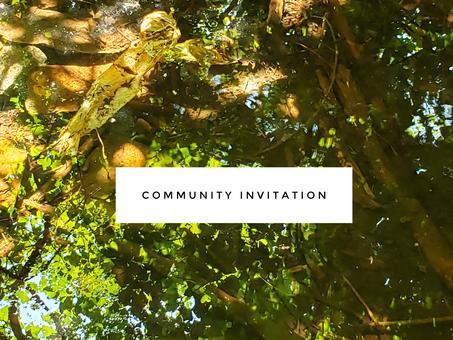 The Next Phase of Community