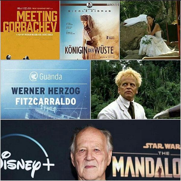 Herzog collage.jpg