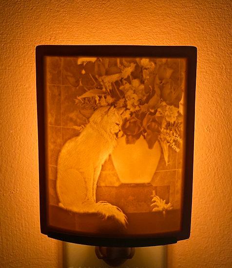 Handmade porcelain Lithophane night lights