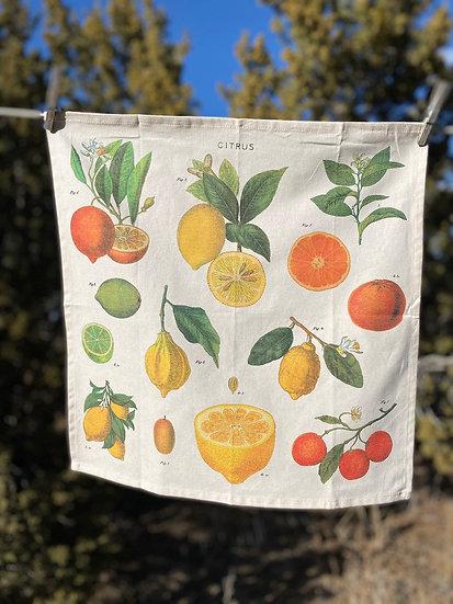 Cavallini & Co. vintage napkin sets