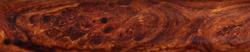 Wüsteneisenholz