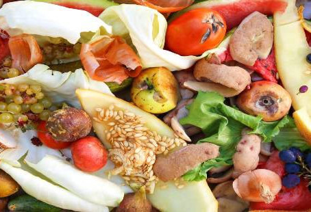 Cheshire East Council backs campaign to tackle food waste