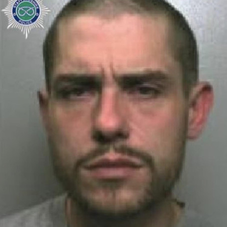 Man jailed for string of cross border offences
