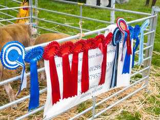 Leek show chairman releases statement following shows cancellation