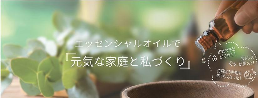 June 2020 ウェビナーちらし.jpg