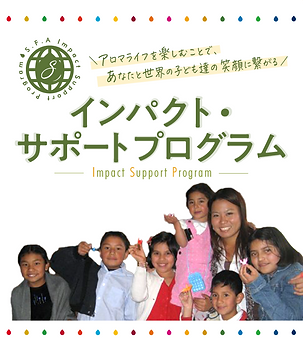 Impact Support Program.png