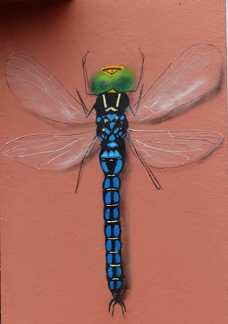 A. BnB dragonfly by Rowdy