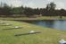 Vanaf juli Headprofessional op Golfpark Groendael