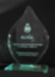 NODA-Flame-Award-2011.jpg
