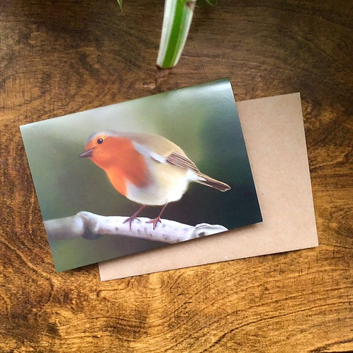 Winter Robin Greetings Card