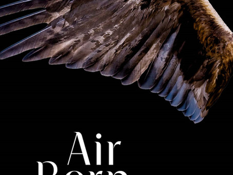 NZ Booklovers Review 'Air Born'