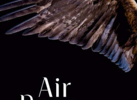 Review of Air Born from award winning author, W J Scott