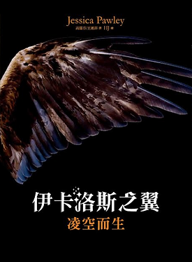 Chinese Air Born cover.png