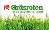 Gräs_730.jpg